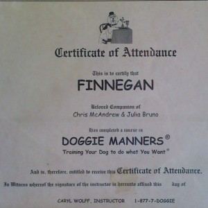 Doggie Manners Diploma - Dog training class certificate of attendance