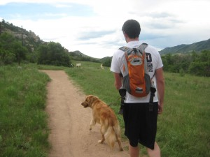 Hiking with a golden retriever