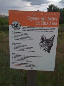 Warning Coyotes. Also warning, terrifying fire ants